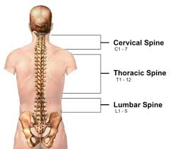 Love your spine